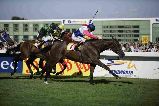 POCKET POWER b g 2002 JET MASTER – STORMSVLEI Won: 3 x J&B Met (Gr.1) 2000m Won: 4 x Queen's Plate (Gr.1) 1600m Won: Durban July (Gr.1) 2200m Won: Gold Challenge (Gr.1) 1600m Won: 2 x Green Point Stakes (Gr.2) 1600m Won: Winter Derby (Gr.3) 2400m Won: Winter Classic (Gr.3) 1800m Won: Winter Guineas (Gr.3) 1600m