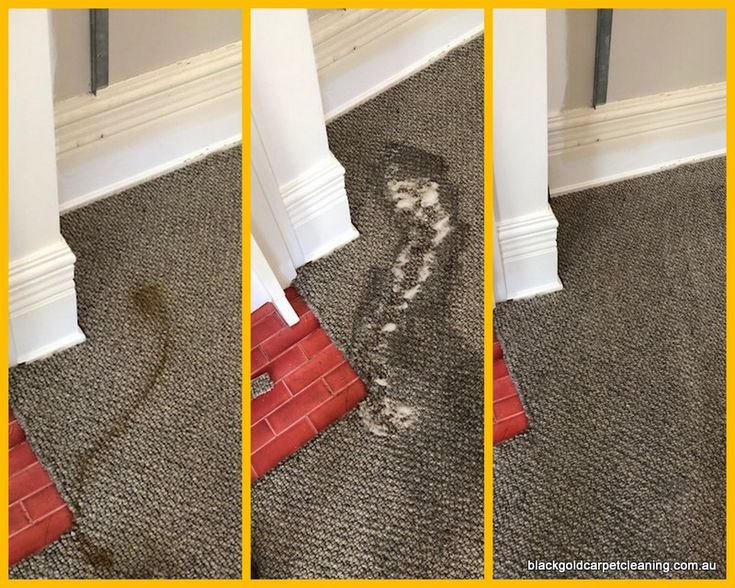 This carpet was brand new - 2 days after installation!! The customer was so relieved!
