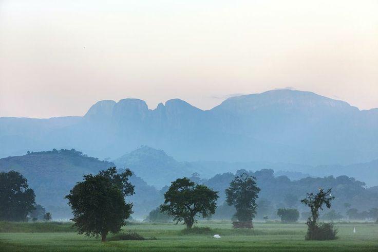 FarCry #BoutiqueAccommodation #SriLankaResort for scenic holidays near #MahaweliRiver #MahaweliNaturereserve  www.OzeHols.com.au/10976 www.LankaHols.com