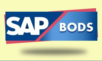 SAP BODS Online Training offered by IT Experts in XoomTrainings from USA. Our SAP BODS trainers come with vast work experience and training skills.