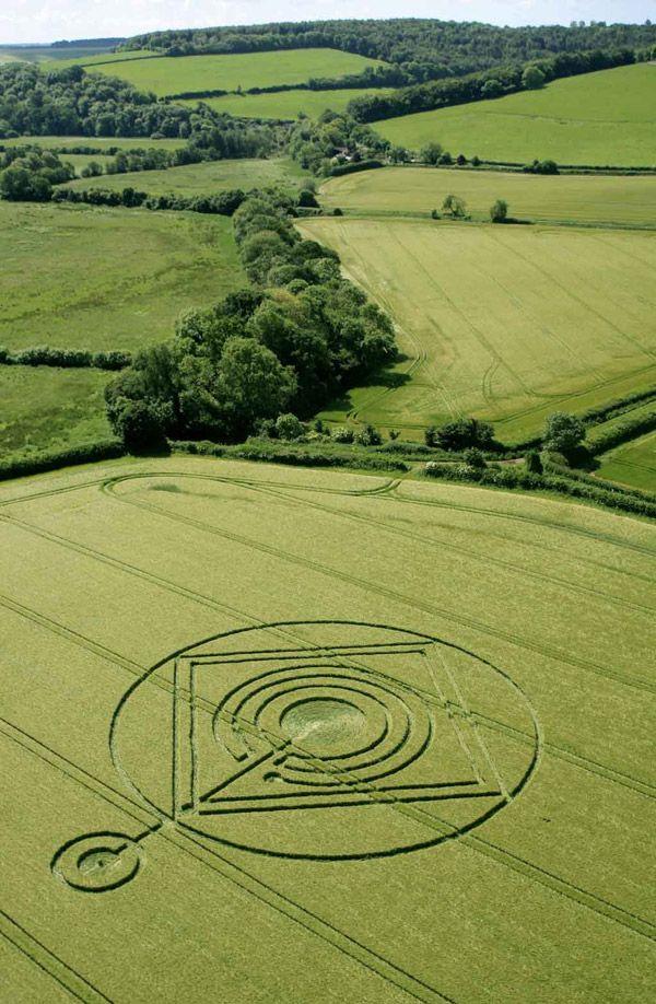 Crop Circle at Hod Hill, nr Hanford, Dorset, United Kingdom. Reported 1st June 2014