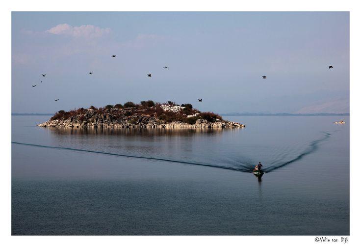 Skadar meer in Montenegro. Aan het Skadar meer in Montenegro bij het dorpje Donji-Murici kwam dit bootje aan wal gevaren van af het eilandje V. Gorica. Op een aantal eilandjes in het Skadar meer bevinden zich kloosters.