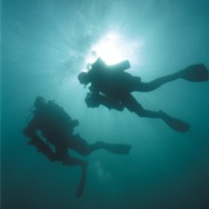 PADI scuba diving, been too long since I last dived
