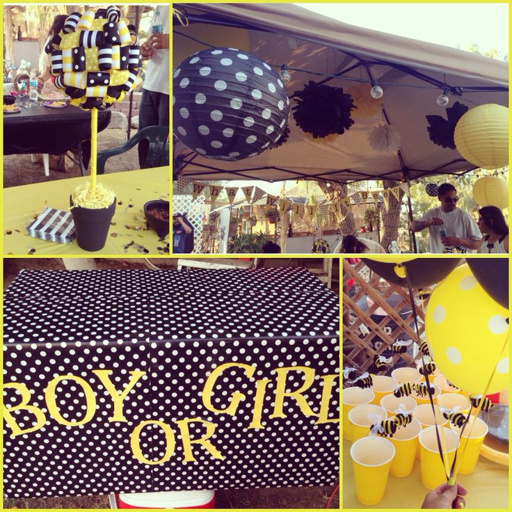 I Loved My What Will It Bee Gender Reveal Party