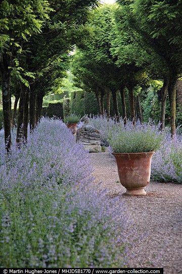 it 39 s time to get inspired planters pinterest jardins lavande et bastide. Black Bedroom Furniture Sets. Home Design Ideas