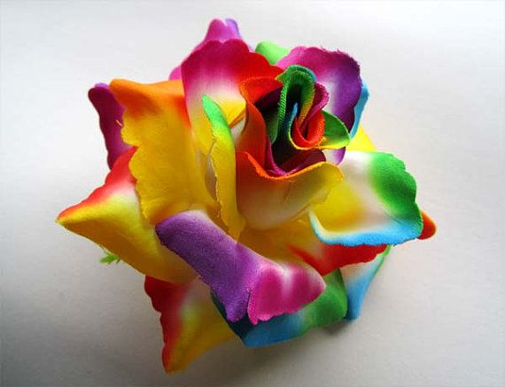 Rainbow roses with raindrops cake rainbow flowers for How to make multi colored flowers