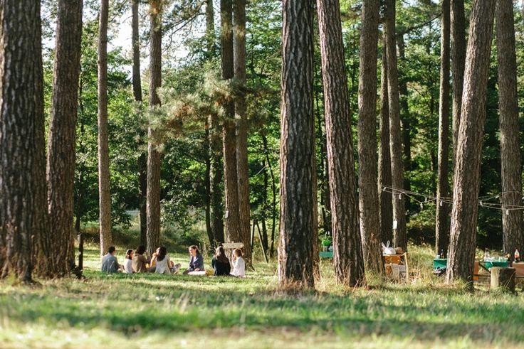 Woodland wedding anniversary #wedding #anniversary #woodland #conleballerineverdi