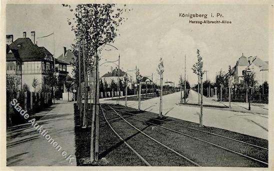 Königsberg Pr. Herzog-Albrecht-Allee