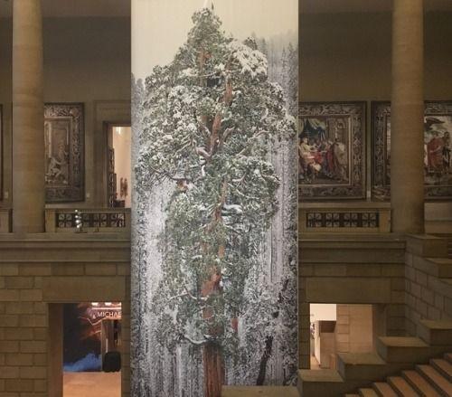 Philadelphia Museum of Art | Our Story