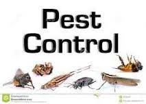 Initiate brisk development for office pest control to abstain from facing significant expenses in change of furniture and other structural components. For more info visit www.sydneypestservices.com.au/#!sydney-office-pest-control/cipy