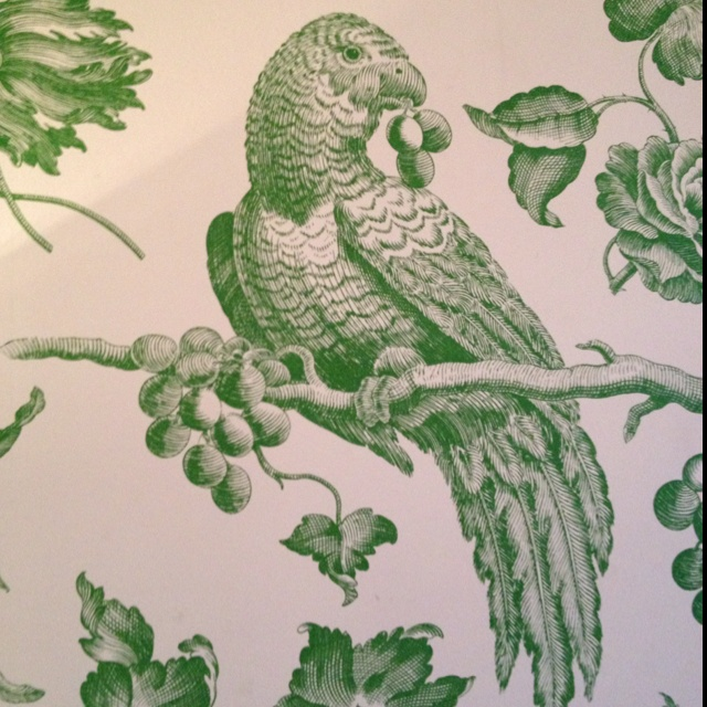Parrot wallpaper in the Penthouse at the Soho hotel London.