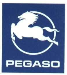 Pegaso Logo