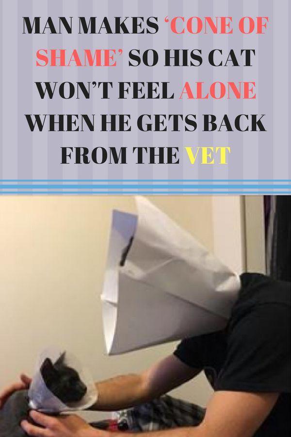 Image result for man cone of shame