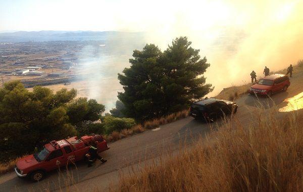 Συμβαίνει τώρα: Πυρκαγιά στη Χασιά, 17 οχήματα επί τόπου