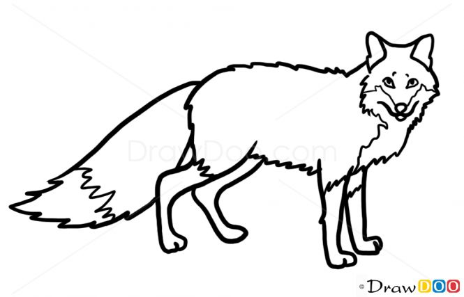 Line Drawings Of Wild Animals : Best images about little critter silhouettes vectors
