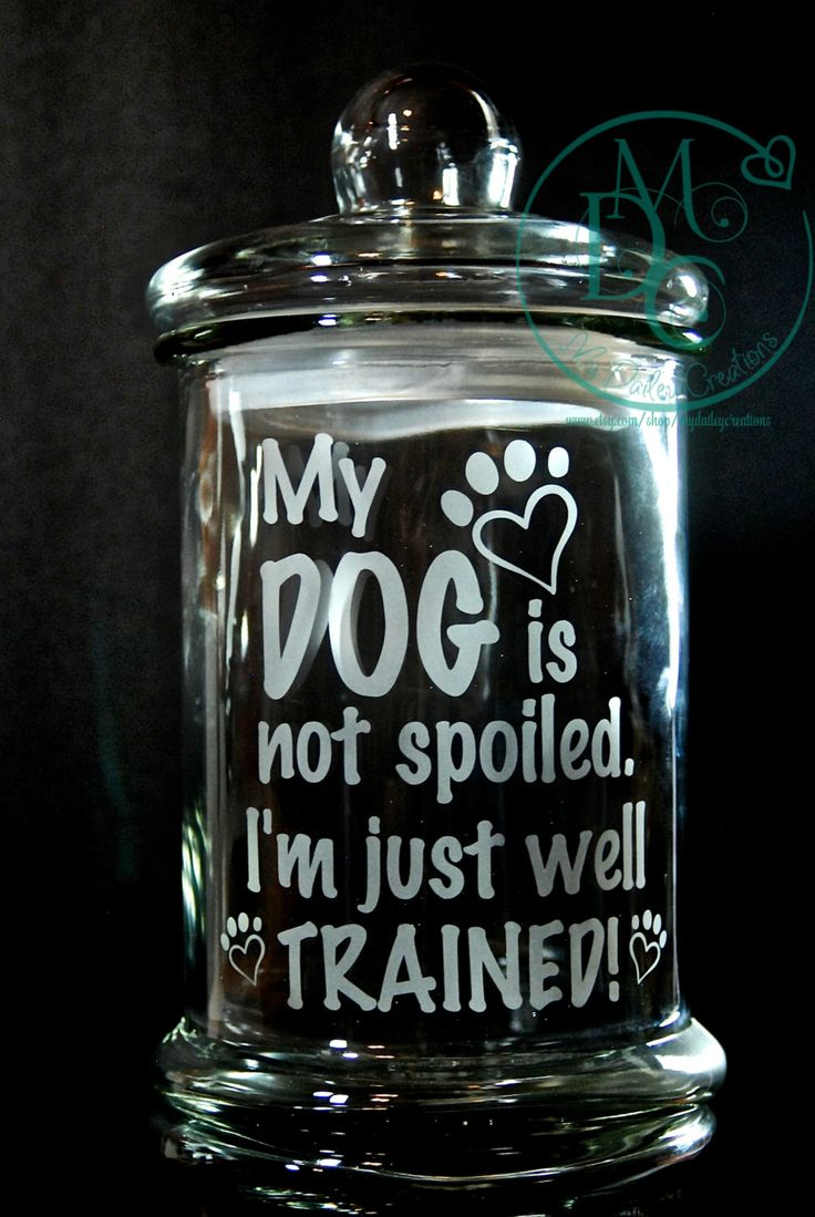 Glass Etched Large Dog Treat Jar with Saying My Dog is Not Spoiled I'm Just Well Trained, Sandblasted Sand Carved Glass Art Glass Etching - pinned by pin4etsy.com