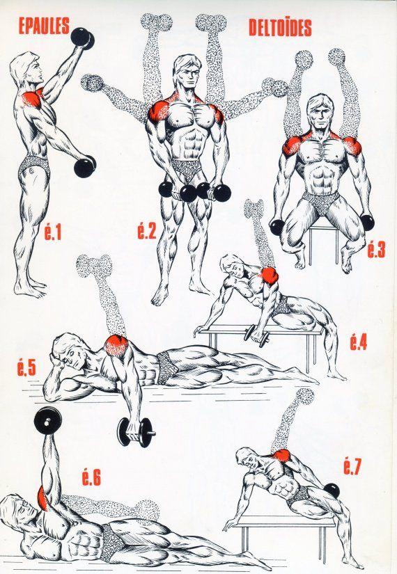 1000 id es sur le th me circuit abdos sur pinterest for Des programmes de musculation