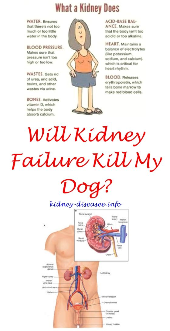 how to help low kidney function