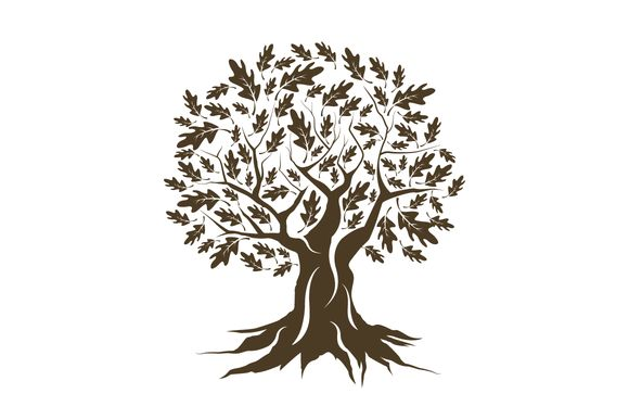 Vector oak tree silhouette by provector on @creativemarket