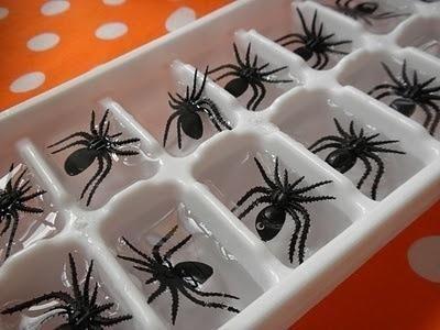 DIY Halloween - Des araignées en plastique dans les glaçons !