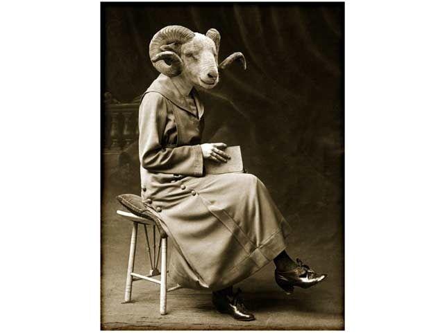 """Le Cabinet de curiosités : """"La femme bélier"""" : Photos par retrofutur"""