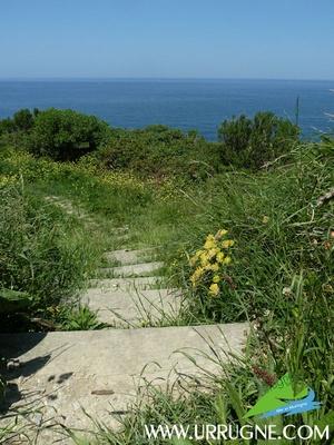A faire : le sentier du littoral qui suit les falaises de la Corniche  www.urrugne.com