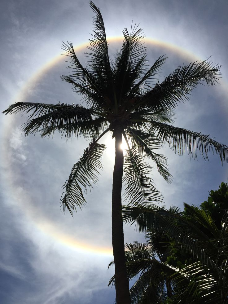 Sun halo at Kata Beach Resort Phuket