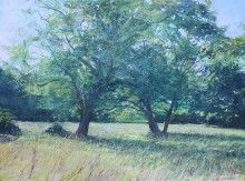 Paul Lewin Ash Trees, Nancealverne mixed media 57 x 76cm £2450 available from www.cornwallcontemporary.com