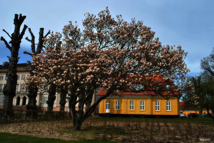 Maj 2017.... Ingemann's Hus ved Sorø Akademi