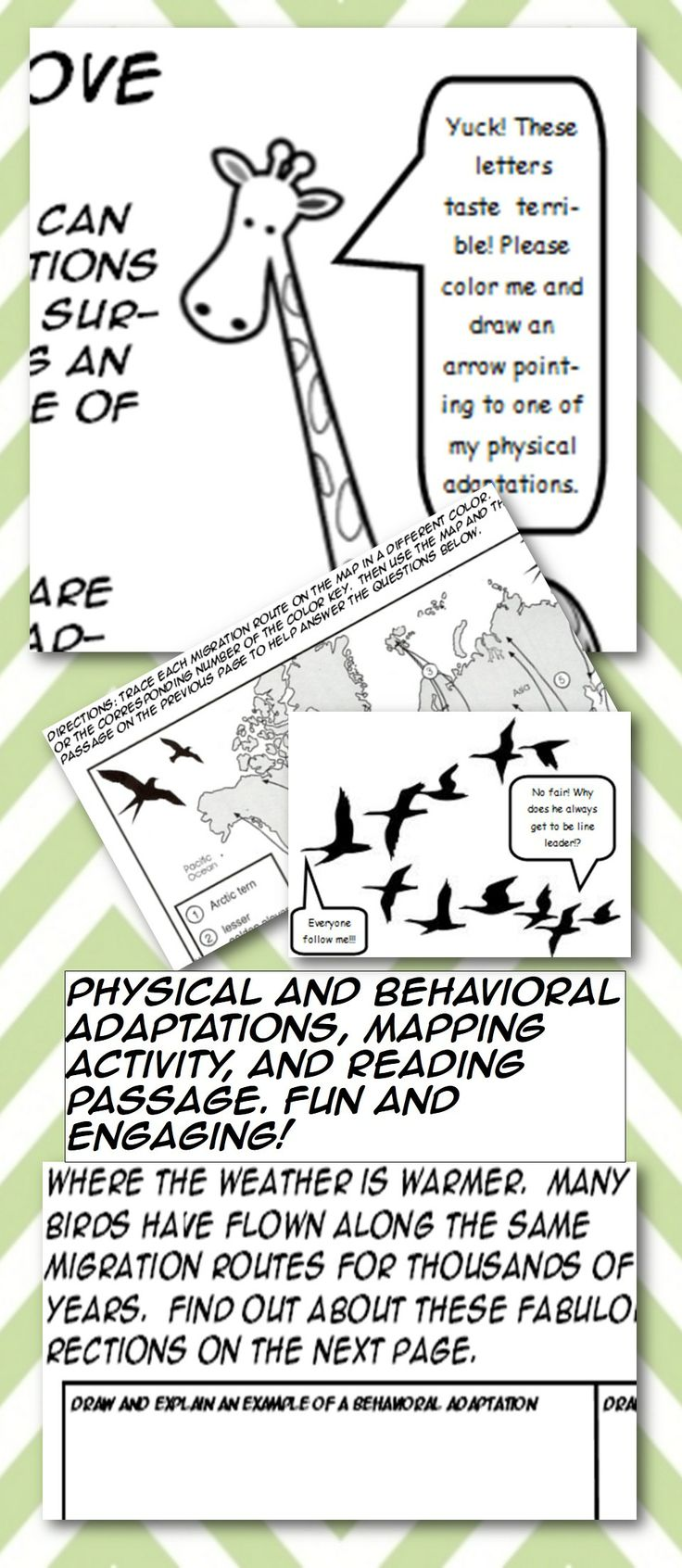 Great Adaptations activity! Fun and engaging! Includes behavioral and physical adaptations. Engages students with coloring, map interpretation, and reading. Funny, comic style design further enhances engagement. Great classwork, homework, or substitute activity. Designed for middle grade students, most appropriate for 4th through 7th grade students.