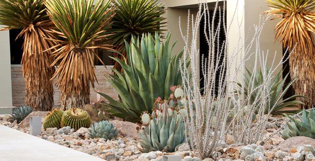 New Century Garden: A Garden of Water and Light _ Steve Martino