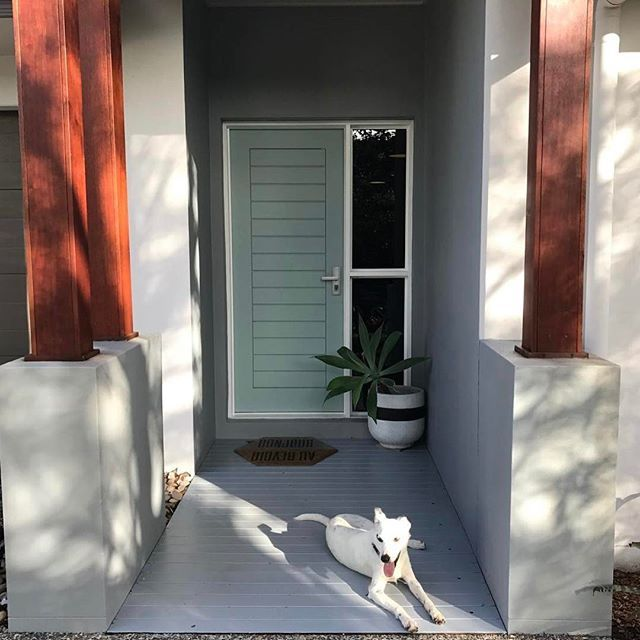 Front door reveal   We decided to paint the front door in Duck Egg Blue from Dulux - my fav colour!  .  .  #frontdoor #entrance #homedecor #homeinspo #duckegg #colour #colourchoices #coloureddoor #bordercollie #whippet