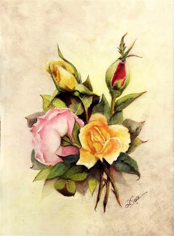 Water Color Pencil Roses Tutorial - Step by Step