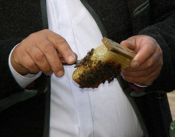 Απαραίτητοι μελισσοκομικοί χειρισμοί