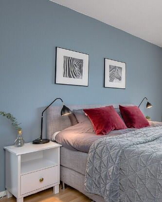 Bedroom blue wall zebra velvet