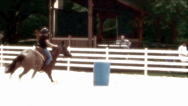 And you could tell that a horse used to be a barrel racer because every turn looked this this…