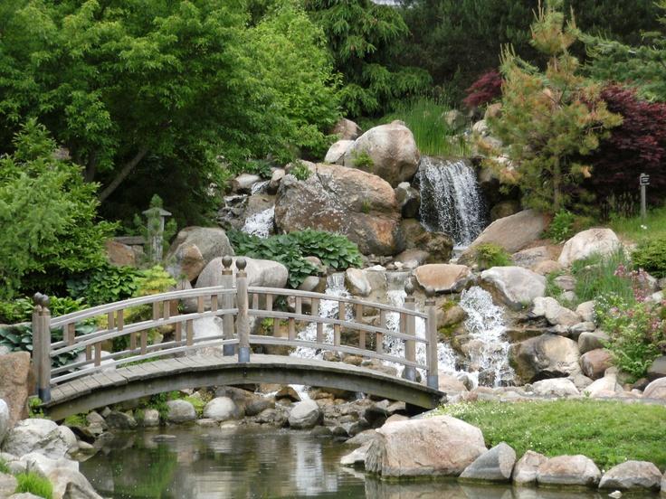 Dubuque Arboretum Anyone Have Leading Lady - Dubuque Arboretum And ...