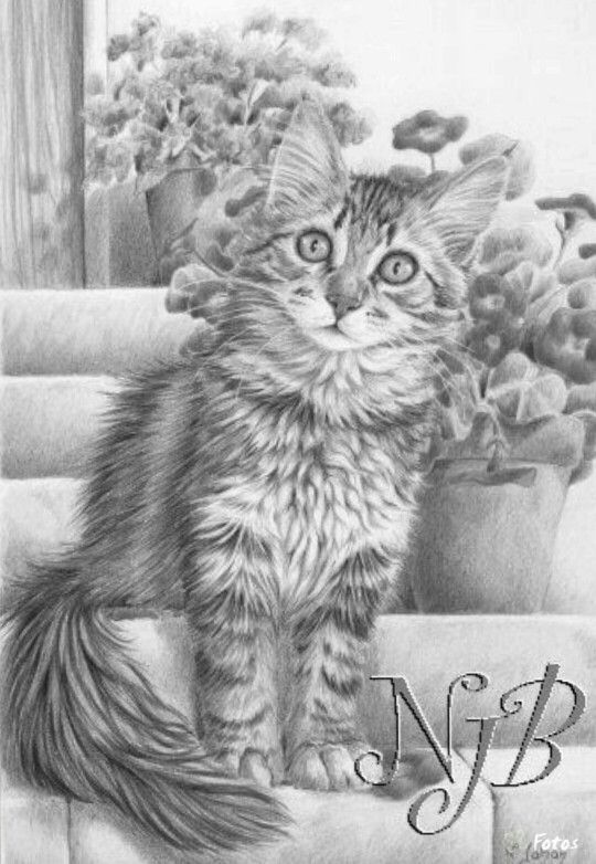 873 best Colouring pages Animals images on Pinterest ...