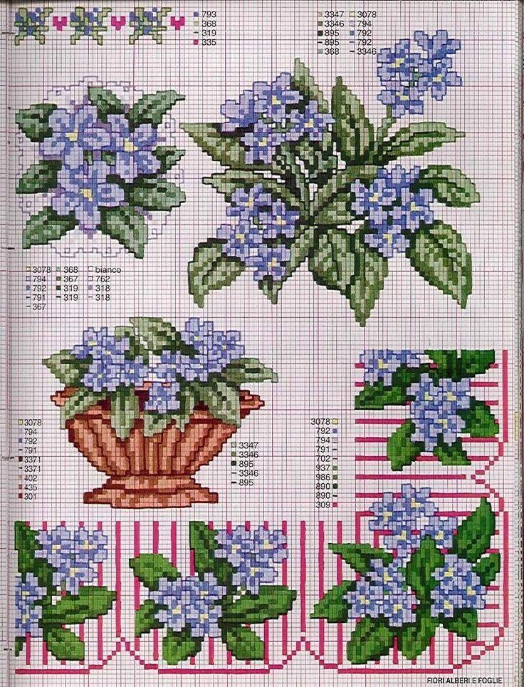 violets bordures