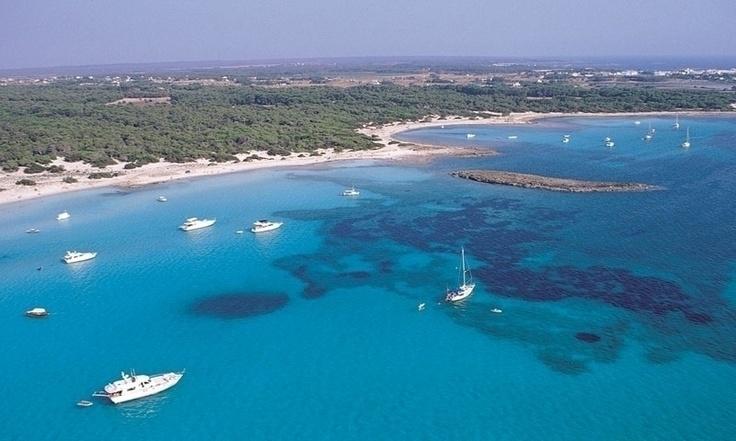 Es trenc - Palma de Mallorca