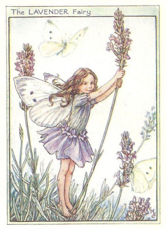 http://www.wellandantiquemaps.co.uk/lg_images/The-Lavender-Fairy.jpg
