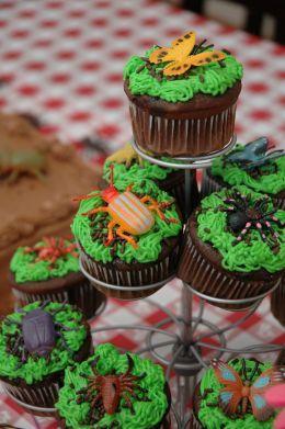 Best Bug Cupcakes Ideas On Pinterest Ladybug Party Foods - Bug cupcake decorating ideas