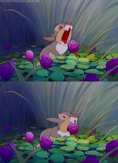 Thumper!, Yes momma?, What did your father tell you?, 'Bout what?, About eating the blossom and leaving the greens!