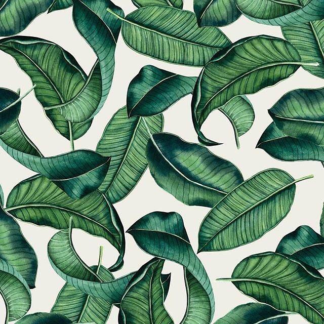 » https://patternbank.com/yuliyashora #watercolor #watercolour #botanical #botanicaldrawing #botanicalillustration #art_we_inspire #textiledesign #botanicalwatercolor #watercolorpainting #topcreator #surfacepatterns #textile #textiledesign #textiledesigner #pattern #patternbank #seamless #fabric #fabricdesign #leaf #leafpattern #green IG: @yuliya_shora