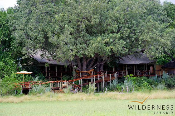 Tubu Tree  Camp was awarded with a TripAdvisor Certificate of Excellence in 2013 #Safari #Africa #Botswana #WildernessSafaris
