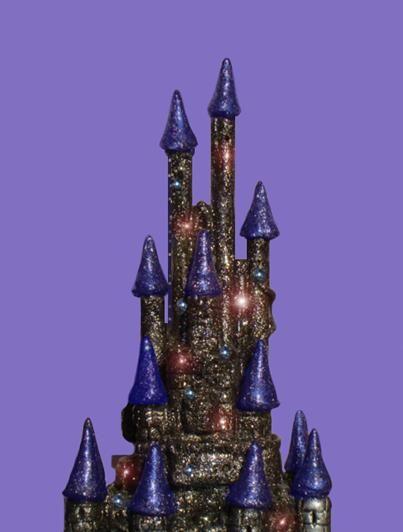 Enchanted Castle. Close up.