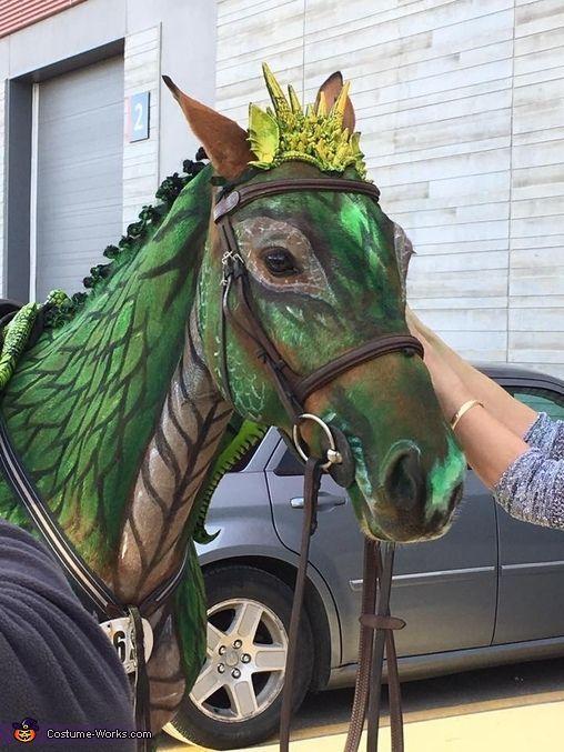 Mein Pferd, Cintaura, trägt das Kostüm. Wir hatten einen Körpermaler auf ein Pferd nehmen