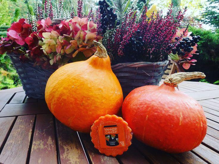 Jesienna dekoracja. Wosk Yankee Candle Candy Corn z limitowanej serii Halloween.