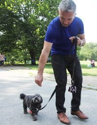 Cesar Millan Training A Hyper Dog