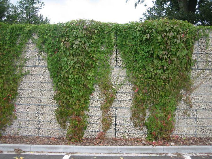 73 best gabions images on pinterest gabion retaining for Gabion landscaping